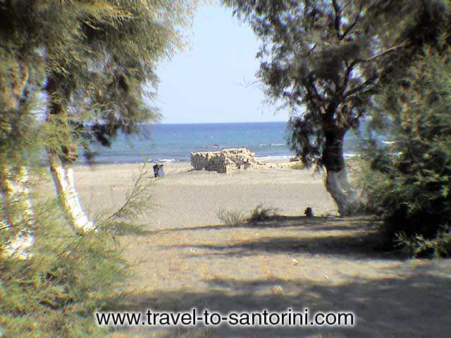 VIEW OF THE BEACH - View of Monolithos beach with the pine trees on the beach