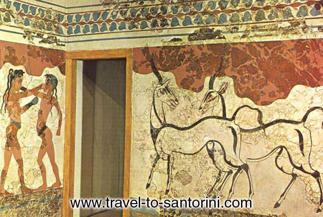 The boxing boys and the antelopes. Two of the fabulous wall paintings of Akrotiri Santorini. SANTORINI PHOTO GALLERY - WALL PAINTINGS