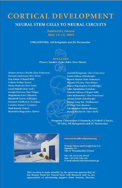 CORTICAL DEVELOPMENT NEURAL STEM CELLS TO NEURAL CIRCUITS ORGANIZERS: AR Kriegstein and JG Parnavelas ...